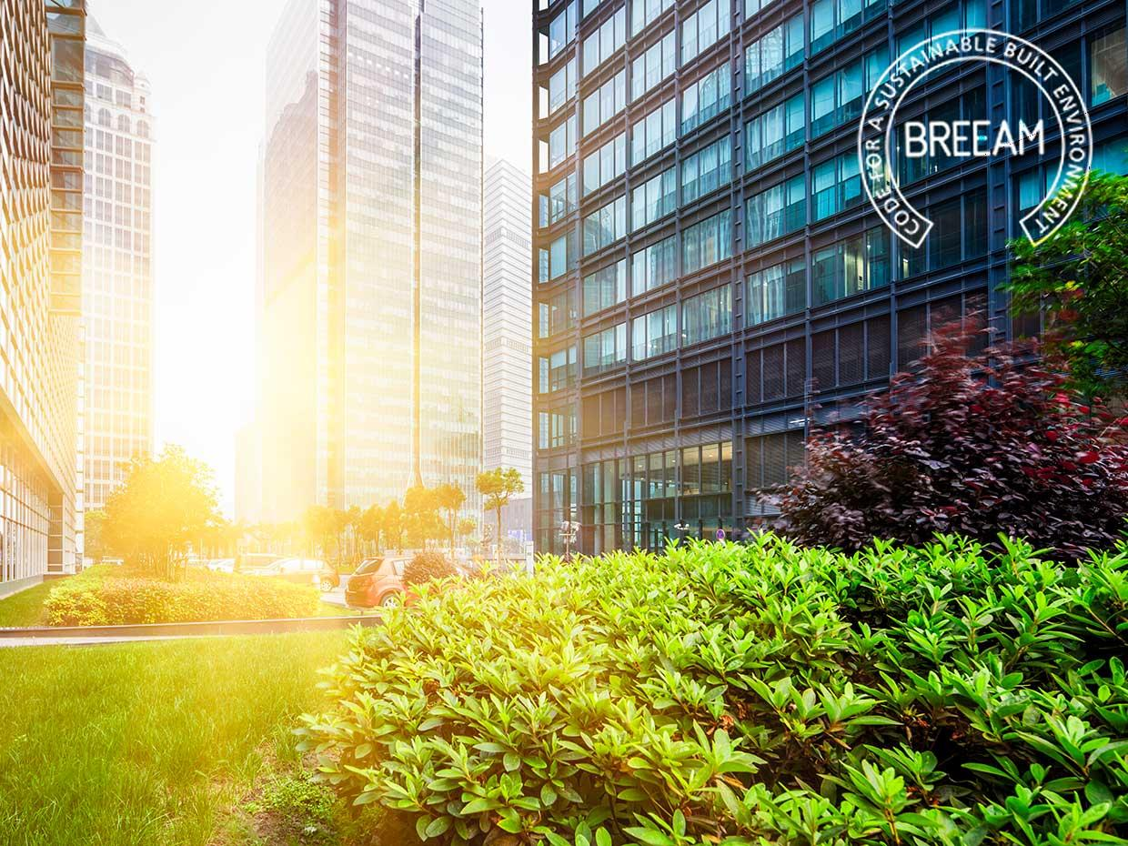 Sustainable Lighting for a Brighter Future: Living the BREEAM